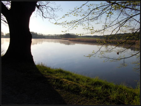 Prostřední rybník