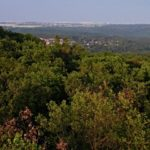 Petrovka, Tuchonín a hlavně Vysoký vrch