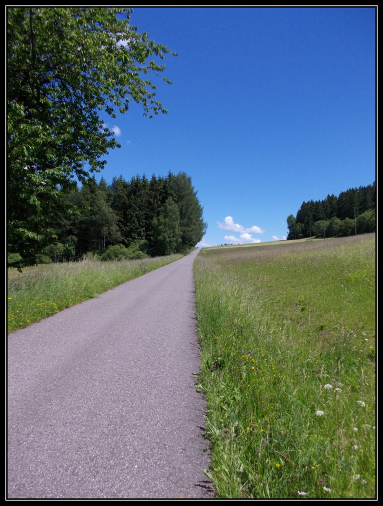 cesta k Radingu