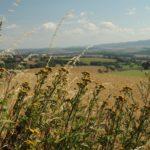 Výlet na Filipovu Horu a LPD2017 na Můstku
